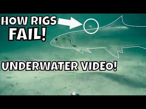 IS YOUR POMPANO RIG WRONG? SURF FISHING