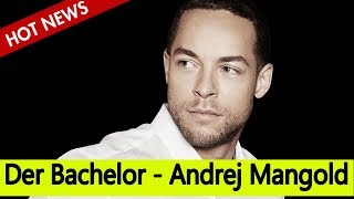 Der Bachelor - Zerstört Andrej Mangold Das Leben Seiner Ex-freundin?