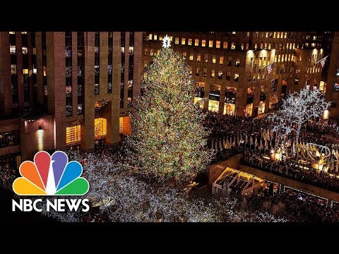 from backyard to concrete jungle journey of the 30 rock christmas tree nbc news