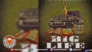 Sliva - Big Life - April 2019