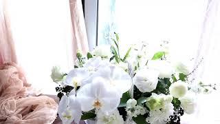 서초역꽃집근조꽃바구니