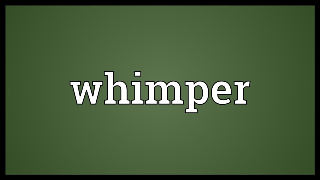 What does whimper mean