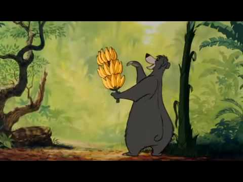 Le livre de la jungle il en faut peu pour tre heureux the bare necessities youtube - Dessin livre de la jungle ...