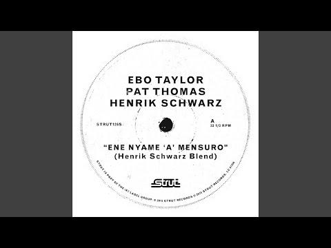 Eye Nyam Nam 'A' Mensuro (Henrik Schwarz Blend)