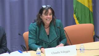 Brazilian Studies in the U.S.: The Road Ahead, Opening Comments thumbnail