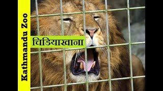 Popular Videos - Central Zoo & Lalitpur