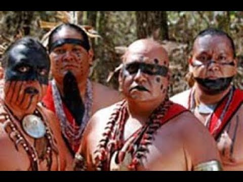 The Cherokee Indians -- Native Americans