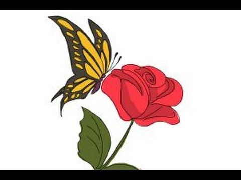 How to Draw a Butterfly On a Flower - YouTube