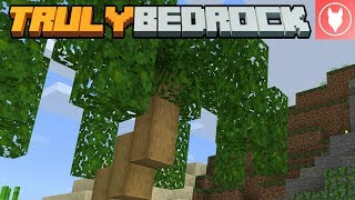 Truly Bedrock SMP: Episode 9 - Palms for Prowl
