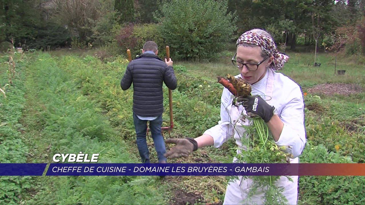 Jardin À L Américaine yvelines | cybèle, une américaine entre four et jardin à gambais