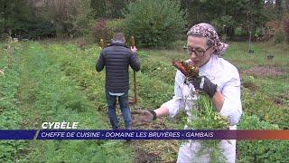Yvelines | Cybèle, une américaine entre four et jardin à Gambais