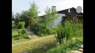 СРОЧНО продаю дом в деревне недорого у воды mp4 2