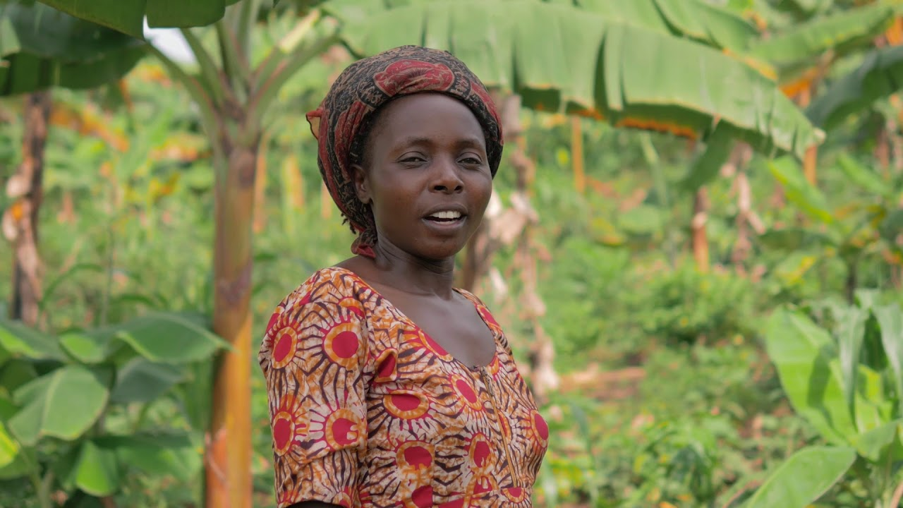 FARM MANAGEMENT SYSTEM, UGANDA