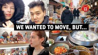 We Wanted to Move, BUT...   + Hospital & Anime Heaven 세라의 건강상태 업데이트 & 올해엔 이사가려고 했는데...