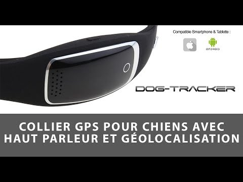 collier traceur gps temps r el sans abonnement pour animaux youtube. Black Bedroom Furniture Sets. Home Design Ideas