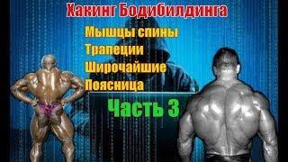 Как накачать мышцы спины. Лучшие упражнения. Техника. Часть 3. Хакинг Бодибилдинга