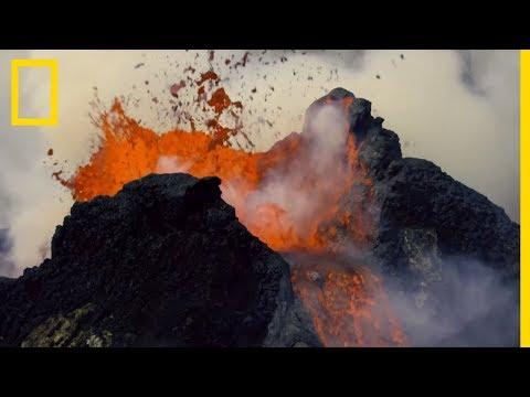 La grande extinction : quand la Terre est devenue toxique