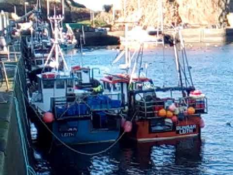 Dunbar Harbour January 2020