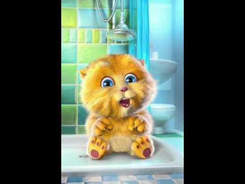 Talking Ginger-chau len ba