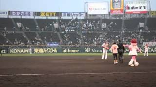 2012年4月10日、阪神甲子園球場でおこなわれた主催試合でタレント・女優...