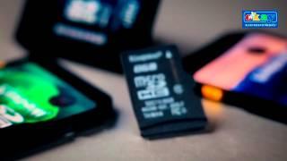 Paměťové karty SD