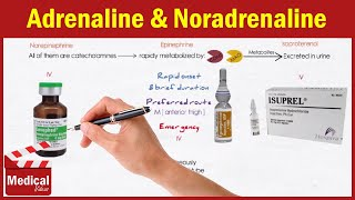 Pharmacology | ANS | 14- Direct acting Adrenergic agonists [ part 1 : Adrenaline , Noradrenaline ]