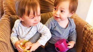 Twins Babies Fighting -Try Not to Laugh Challenge
