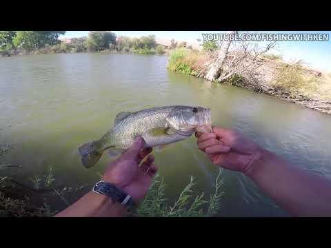 Parkway Lakes Bass Fishing | Morgan Hill, CA