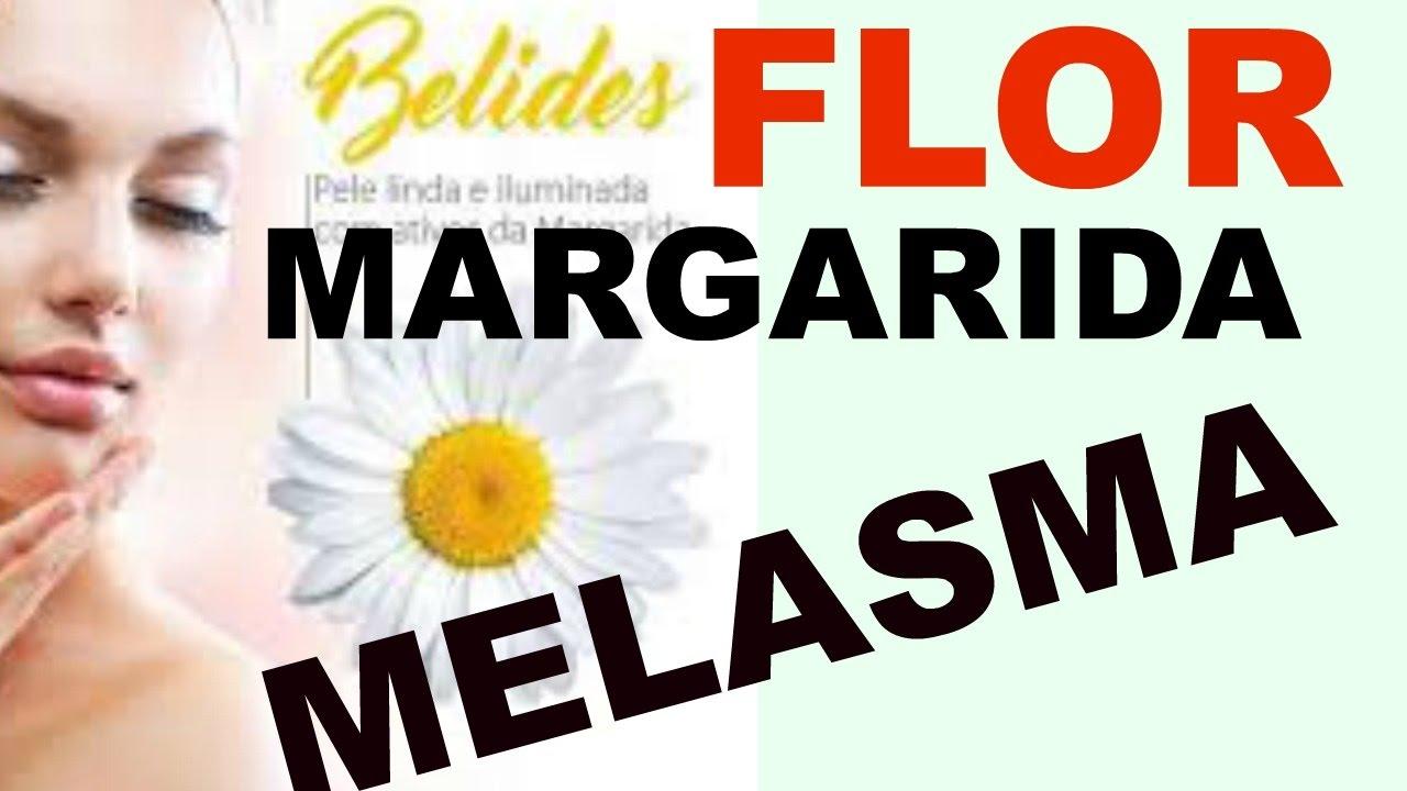 Como Clarear A Pele Com A Flor De Margarida Ou Belides Clareamento