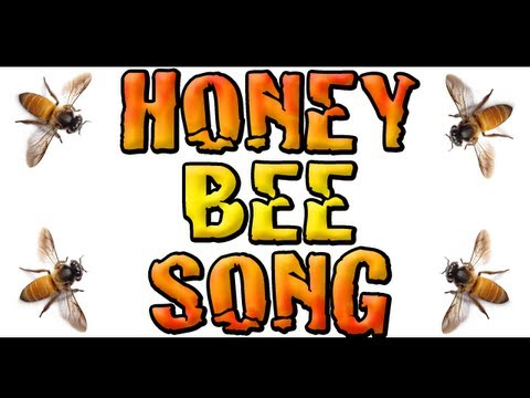 🐝 Honey Bee Song 🐝 Children's Song 🐝 Bee Song 🐝 (Jon Brooks Music)
