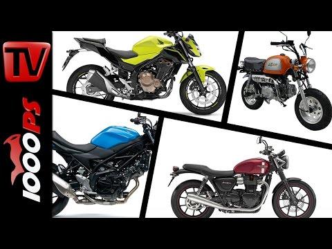 10 Motorräder mit niedriger Sitzhöhe 2016