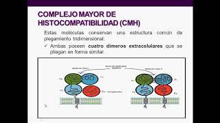 Introducción a la inmunología humana - Clase 5: CMH, TCR y BCR
