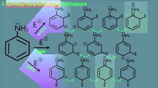 Substituent Effects in Benzene Chemistry Part 1 Organic Chemistry