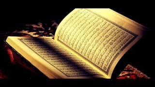 Holy Quran page 114 - Sheikh Maher Al Muaiqly