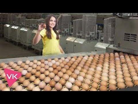 Amazing food processing