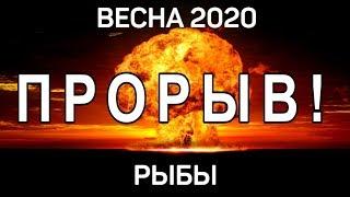 РЫБЫ. 5 НЕВЕРОЯТНЫХ СОБЫТИЙ ВЕСНЫ 2020 ГОД КРЫСЫ. Предсказание таро. Гадание оналйн на картах.