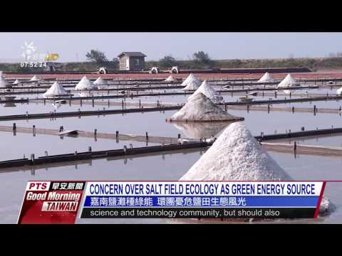 CONCERN OVER SALT FIELD ECOLOGY AS GREEN ENERGY SOURCE 20170
