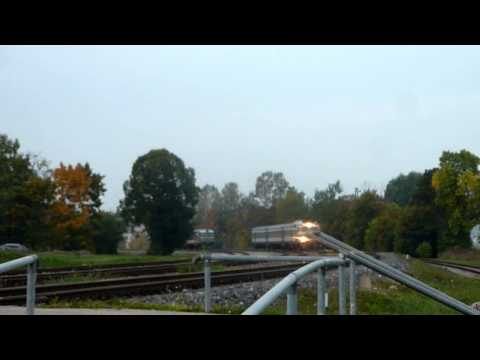 Rongid Tartus