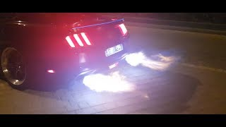 LUCIFER - The DEVIL MUSTANG | The Great Mohammad Ali