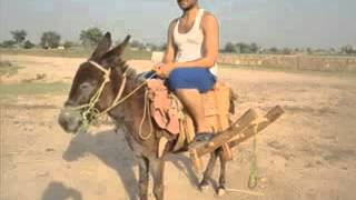 very very Funny By Punjabi Totay   Video Dailymotion
