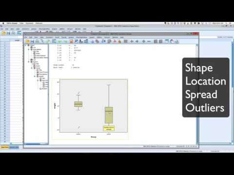 SPI P1 descriptive and plots in SPSS