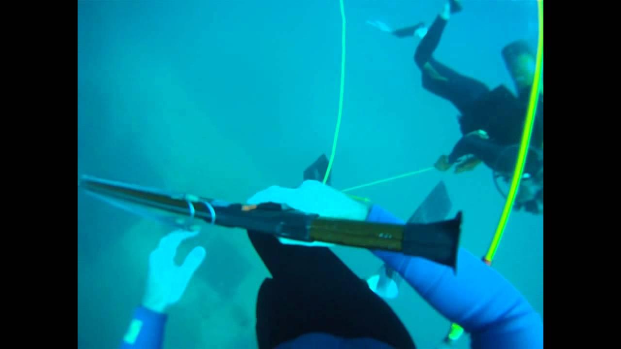 Sebastian Inlet Diving Tug Wreck Youtube