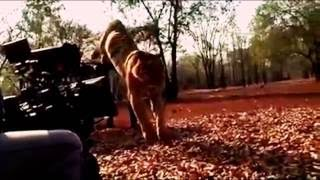 PULIMURUGAN FilM -shooting with tiger. eXposed