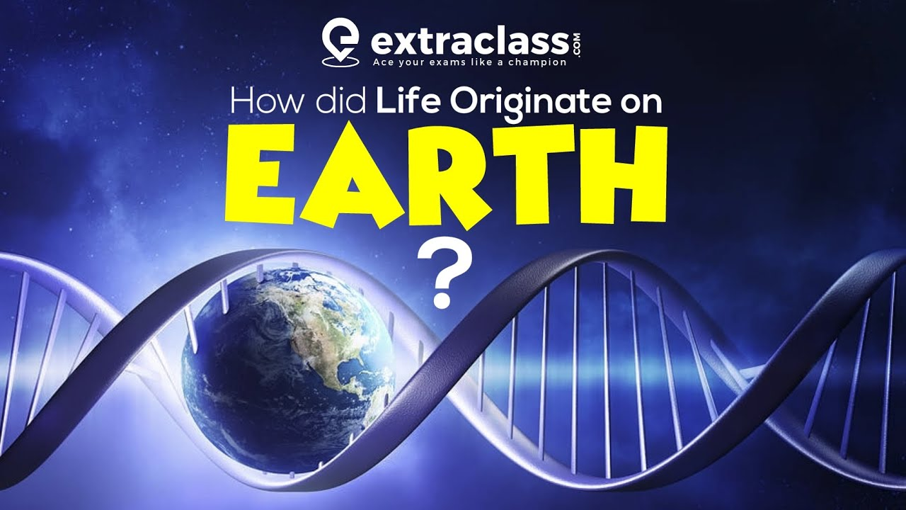 How Did Life Originate On Earth ? | Biology | Extraclass.com