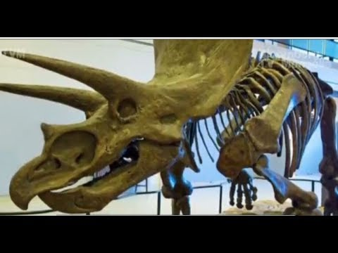 Франкенштейний динозаврын нууцыг тайллаа