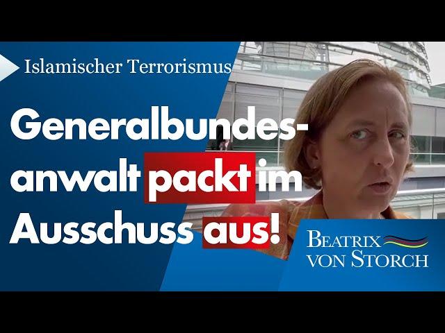 Beatrix von Storch (AfD) - Generalbundesanwalt packt im Innenausschuss zum islamischen Terror aus!