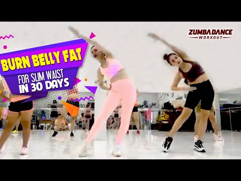 zumba dance workout for belly fat for beginners  zumba
