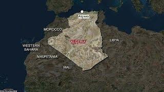 الجزائر:العثور على ناج واحد اثر تحطم طائرة عسكرية