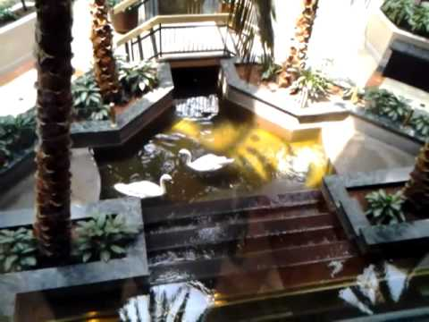 Embassy Suites Hotel Lobby Las Vegas
