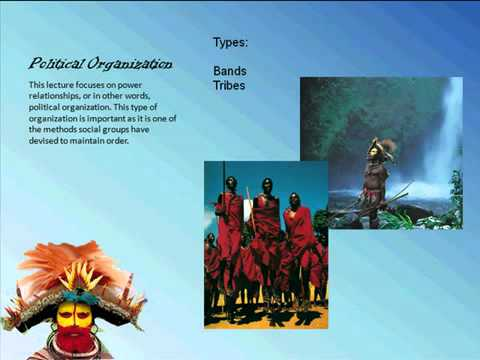 The 4 Types of Organizational Politics